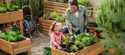 Ravviva il tuo giardino.