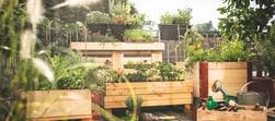 Tutto per un giardino curato.