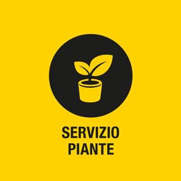 Servizio piante