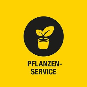 Pflanzen-Service