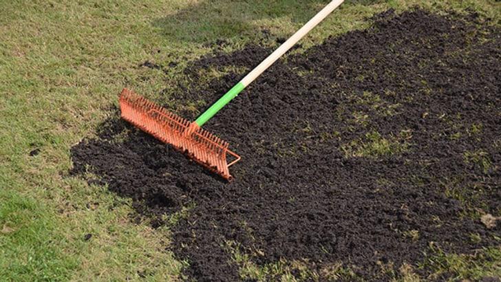 Préparer la pelouse