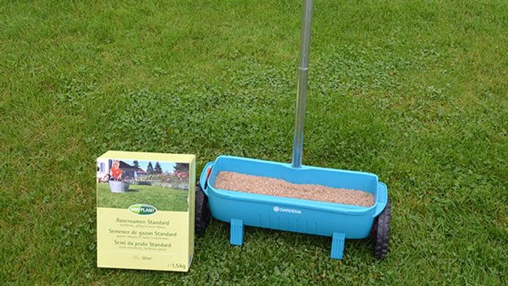 Semer la pelouse avec un épandeur d' engrais