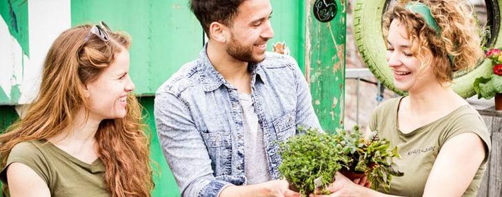 Urban Farming mit Do it + Garden Migros