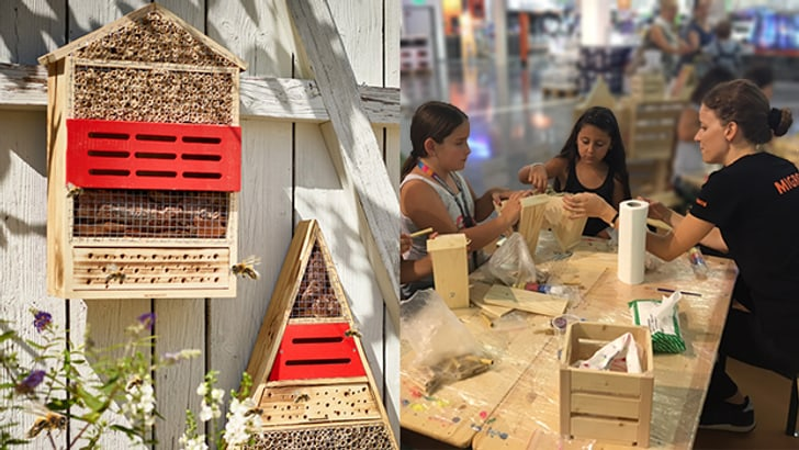 Hôtel pour les abeilles sauvages
