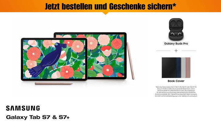 Galaxy Tab S7 & S7+
